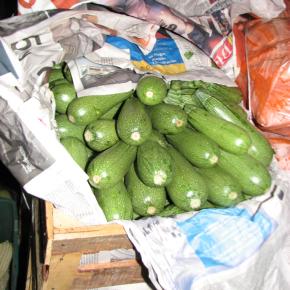Les narcotrafiquants vendent des fruits et des légumes au commerce degros